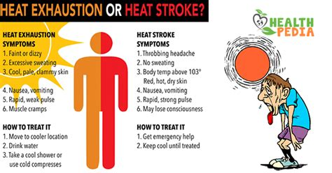 7 Ways To Avoid A Stroke by How To Prevent Heat Stroke Or Heat Exhaustion Health Pedia