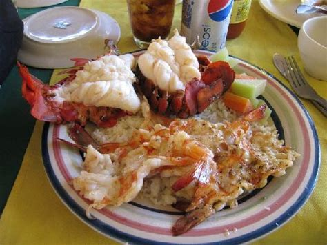 shrimp house shrimp house 28 images news and review columbia harbour house shrimp the disney