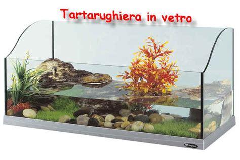 vasche per tartarughe tartarughe acquatiche sito per saperne di pi 249