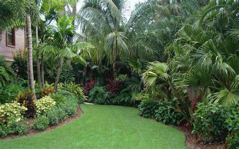 palm tree landscape design