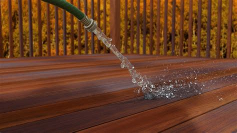 easy steps  maintain  deck  fall