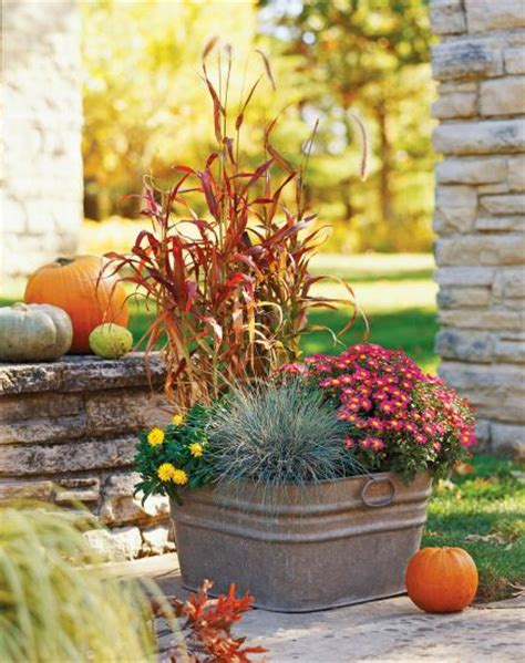 fall container garden ideas fresh fall container gardens midwest living