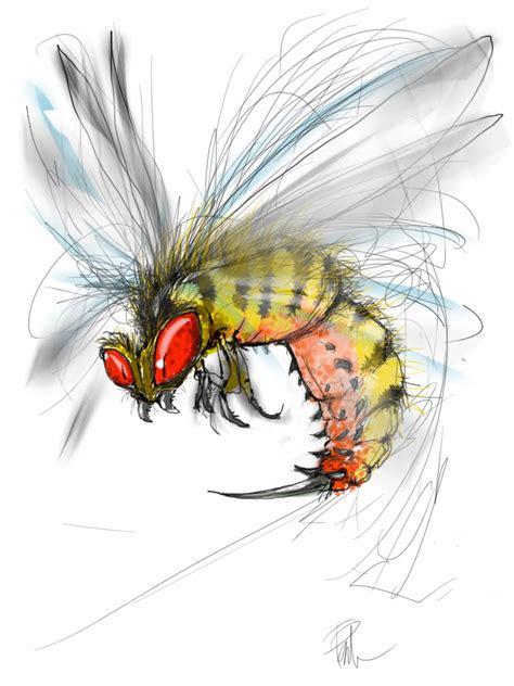 tracker jacker wasp real