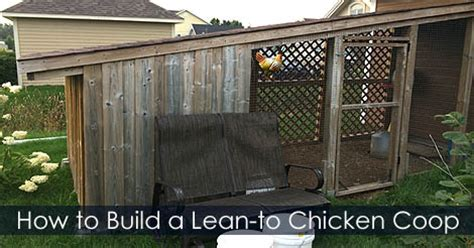 chicken nesting boxes create place for your chickens to lay