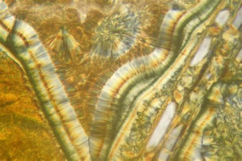 ben hiant basalt thin section microscope slide geosec