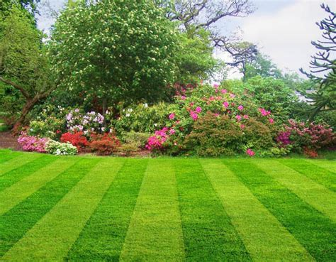 elite landscaping nj elite landscaping services