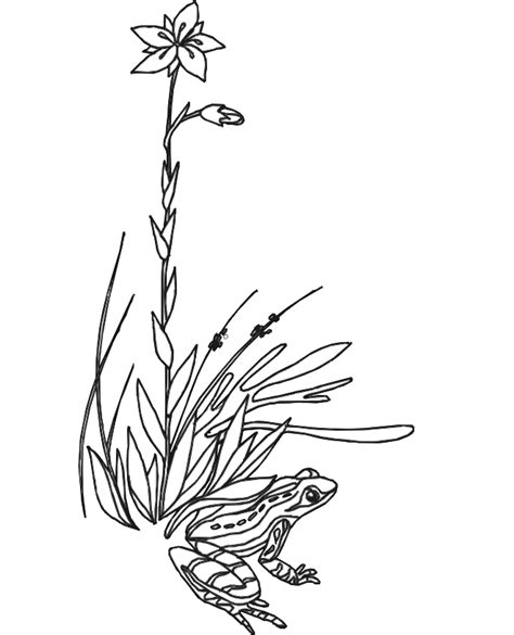 free coloring pages of grass blade of grass colouring pages clipart best clipart best
