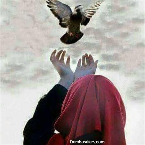 Rahim Wanita In English Muslim Girl With Pigeon