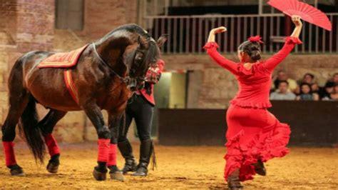 mujer abotonada por un caballo baile entre mujer y caballo pura sangre espa 241 ol caballos