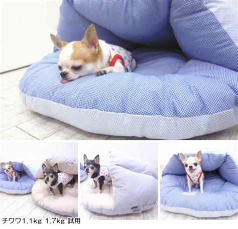 chihuahua beds skipdog rakuten global market cord lane shell bed