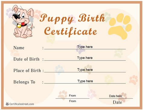 birth certificate not official template helloalive