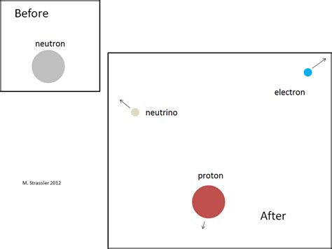 how much does a proton weigh neutron stability in atomic nuclei of particular