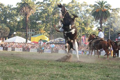 httpgozando mujer y caballo jineteada imagenes no apto para gente sensible
