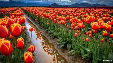 peru natural eden of 9972976556 wallpapers paisajes naturales hermosos del peru fotografias y panoramas de mundode t i p a s o