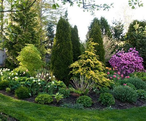 good trees for small backyards small yard small garden landscaping ideas a well