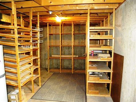 the way to build basement storage shelves home decorations