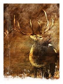 abstract rustic elk painting elk bull elk by
