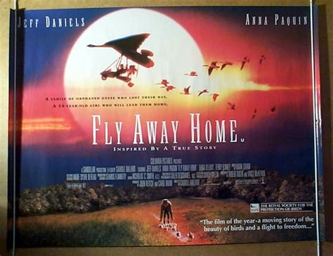 fly away home original cinema poster from