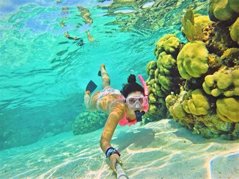 best underwater best underwater cameras for snorkeling and diving