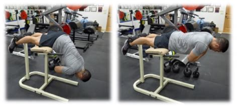 back extensions without bench roman chair back extension bodybuilding wizard