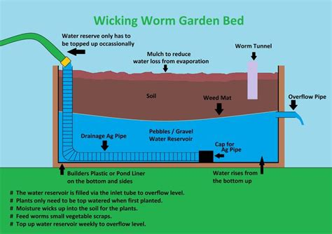 how to build a worm bed wicking bed garden pinterest