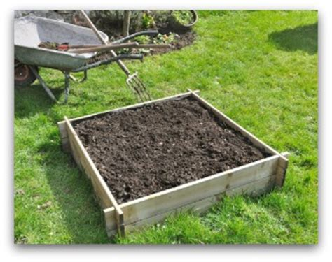 How To Set Up A Vegetable Garden Bed Beginner Vegetable Garden Free Plans Pictures And Worksheets