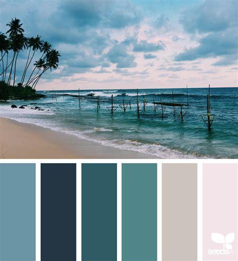 color snap app color flora color snap app snap app and roycroft