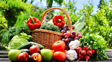 k y vegetables vegetables and fruits photography apples tomatoes