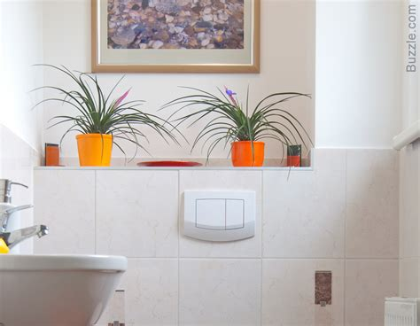 small plants for bathrooms exclusively beautiful bathroom design ideas for small spaces