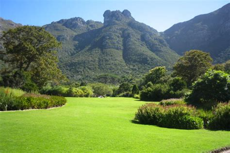 Kirstenbosch National Botanical Gardens The Top Things You Must Do In Cape Town South Africa By Jostin Langur