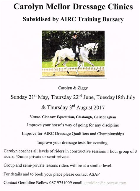 lessons with margot notes on dressage from the author of the dressage chronicles books castle leslie club