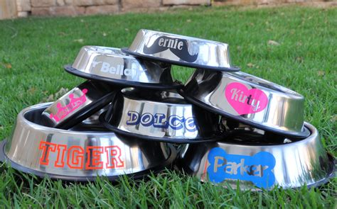 personalized bowls personalized stainless steel bowls customize your pet s name in styles colors