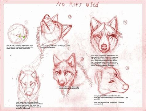tutorial design sketching wolf drawing tutorialby b theawsomegeek how to draw