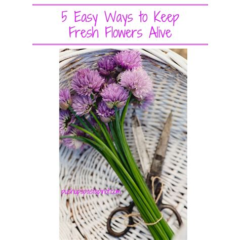How To Keep Flowers In A Vase Alive by 5 Ways To Keep Fresh Flowers Alive Longer Pushups Pasta