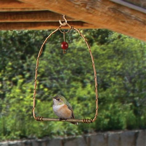 copper hummingbird swing shop nwf