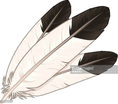 feather stock illustrations and cartoons getty images