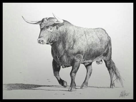 imagenes de leones bravos toro de lidia dibujos de animales pinterest