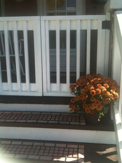 Porch Gate For Dogs 45 best images about front porch gates on courtyard entry sliding screen doors and