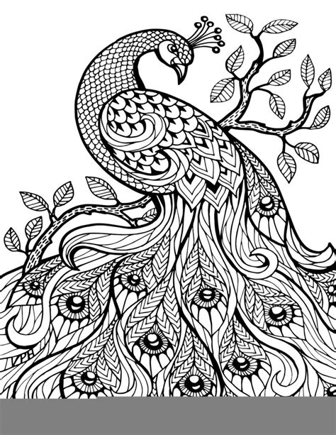 coloring pages zentangle and adult coloring on zentangle