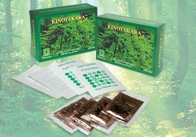 Takara Detox Pads by Kinotakara Foot Detox Pad By K Link International Sdn Bhd