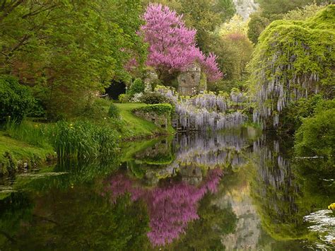 giardini ninfa orari il meraviglioso giardino di ninfa tra essenze floreali