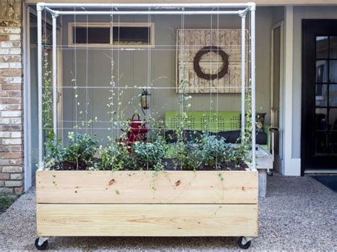diy planter  trellis hgtv