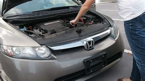 how to your not to cars how to keep rodents out of your car