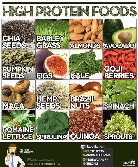 protein high foods high protein foods infographics