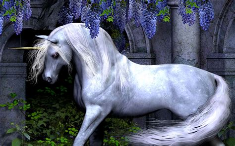wallpaper hd unicorn unicorn wallpaper high definition high quality widescreen