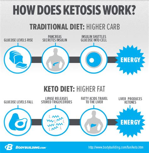 weight loss ketogenic diet ketosis weight loss does it really work meta ketosis