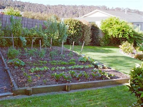 Small Garden With Vegetables, Flowers, and Fruit   4 Home