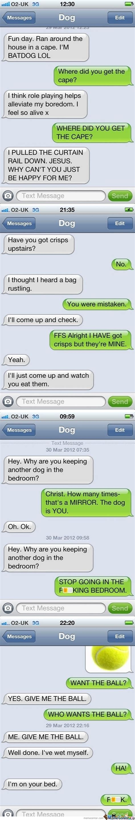 if dogs could text if dogs could text by the and meme center
