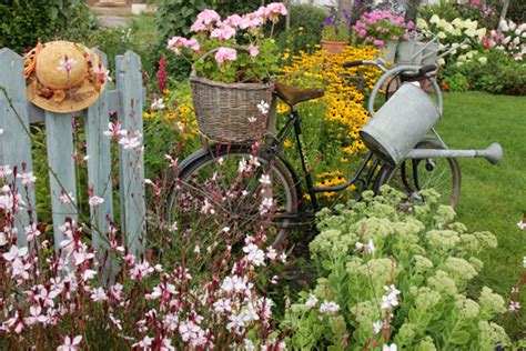 d 233 co jardin chetre plantes poitiers 1826 jardin