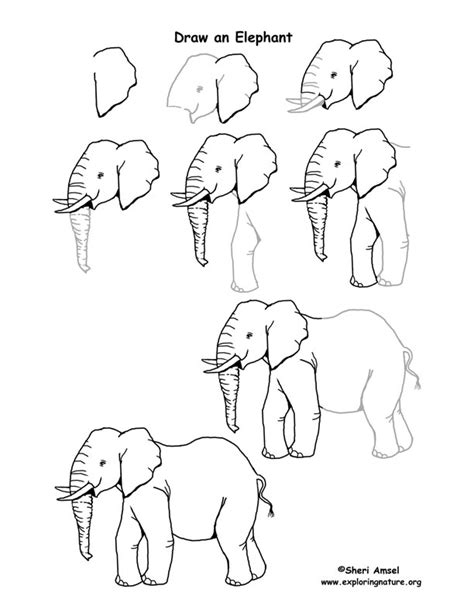 how to draw a doodle elephant elephant drawing jan 04 2013 21 02 25 picture gallery